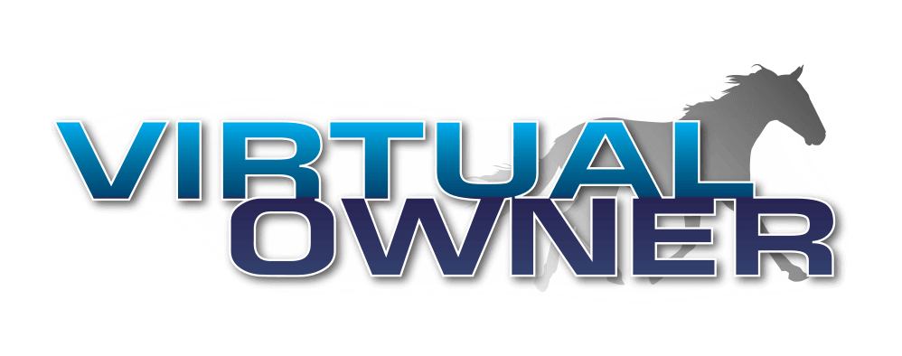 Virtual Owner logo